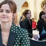 Emma Watson shakes hands with French President Emmanuel Macron